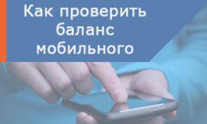 Все способы проверить баланс Ростелеком — на мобильном, домашнем телефонах и интернете