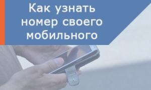 Несколько способов как узнать свой мобильный номер на Ростелеком